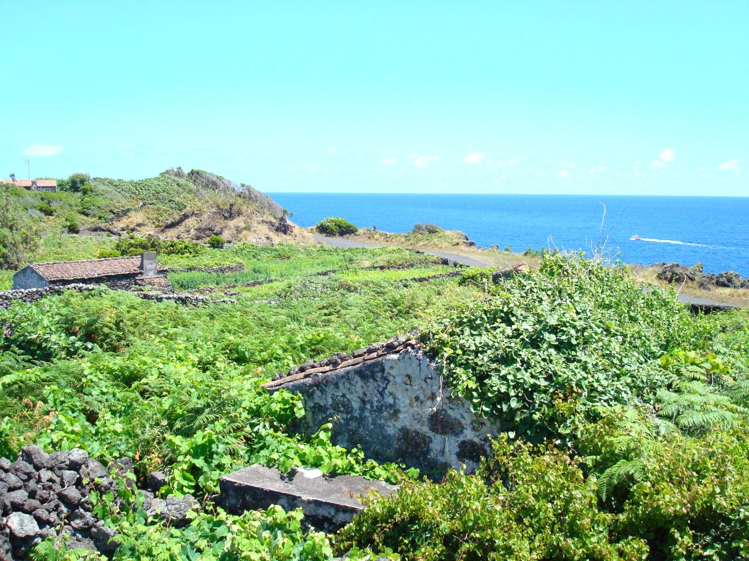 Property for sale Calheta de Nesquim