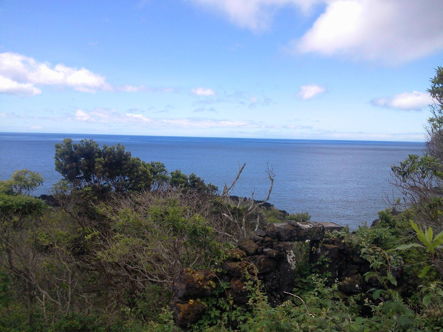 Ruin for sale pico island Photo0434