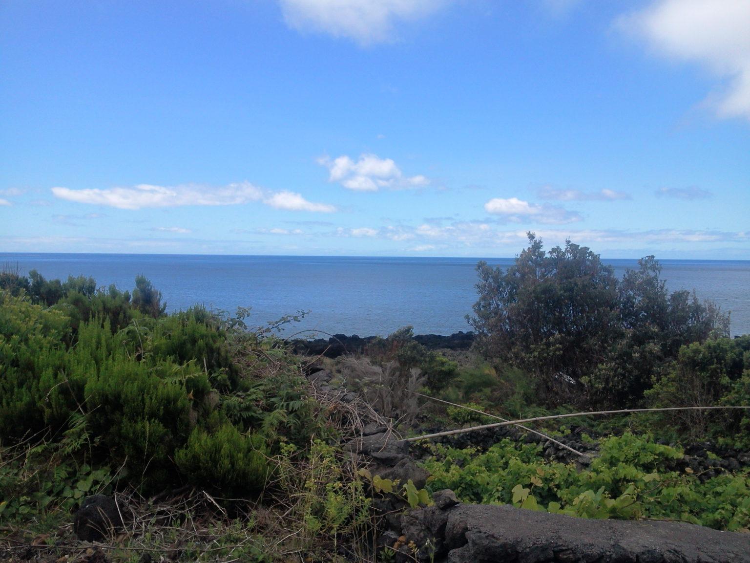 Ruin for sale pico island Photo0443